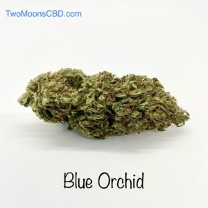 Blue Orchid Hemp Flower
